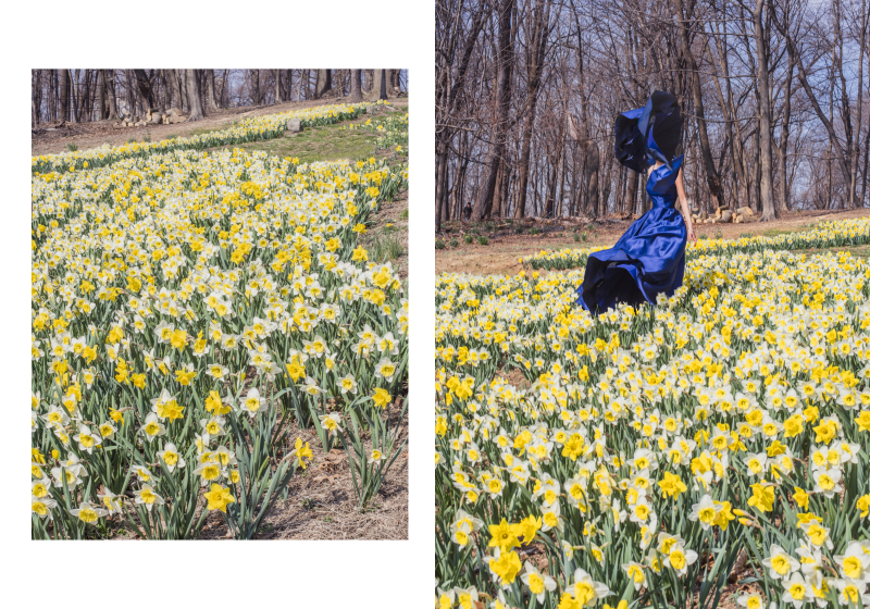 ©Florence-Montmare-Fine-Art-Photographer-blue- dress-spring-field-
